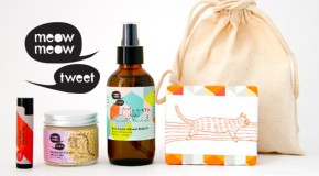 Product Review : The Meow Meow Tweet Holiday Gift Pack