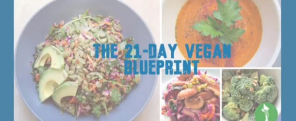 Review and Giveaway: 21- Day Vegan Blueprint