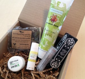 Vegan Cuts Beauty Box February