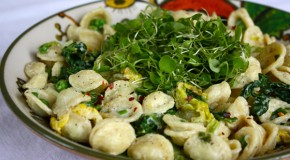 Recipe: Creamy Orecchiette with Cabbage & Peas