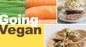 Cookbook Review and Giveaway: Going Vegan