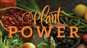 Cookbook Review and Giveaway: Plant Power by Nava Atlas