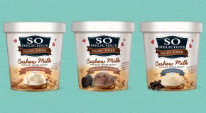 Product Review: So Delicious Cashew Milk Frozen Desserts