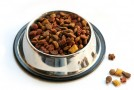 Commercial Pet Food Dangers