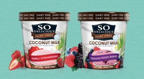Product Review: So Delicious Dairy-Free Coconut Milk Frozen Desserts