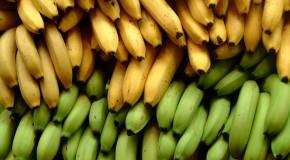 5 Vegan Grocery Staples I Buy Every Week