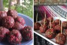 Berry-Studded Chocolate Bliss Balls