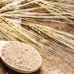 Eight Steps to Retrain Your Body to Digest Wheat