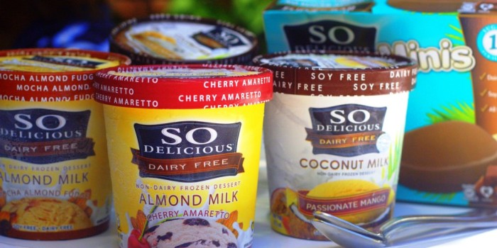 So delicious dairy free ice cream review chic vegan for How to make delicious ice cream at home