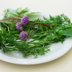 7 Herbs for the Kitchen: A Healthy Balance