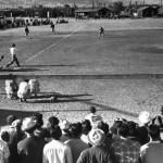 Veggie Happy – Scores Runs at Major League Baseball Stadiums