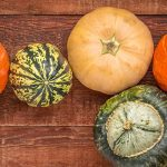 My Top Ten Favorite Fall Fruits and Vegetables