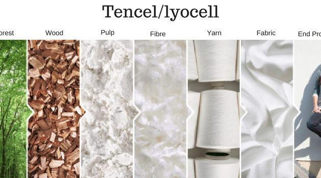 An easy guide to understanding Tencel, the eco-sexy textile