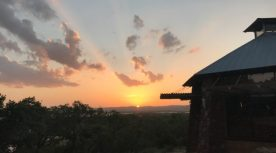 Canyon of the Eagles Resort: A Highland Lakes, Texas Solution for Vegans