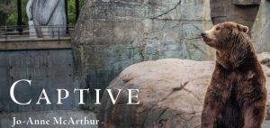 Captive by Jo-Anne McArthur