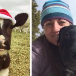Love Yourself and Help Animals During the Holidays