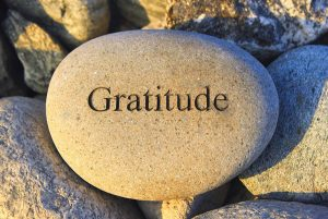 How to Develop an Attitude of Gratitude - Chic Vegan