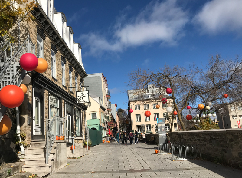 Eating Vegan in Quebec City