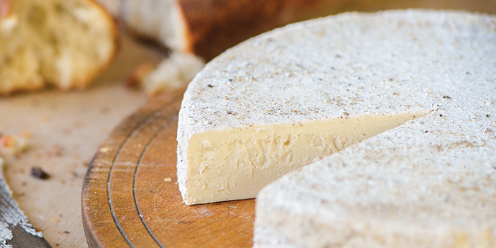 Truffled Brie from One-Hour Dairy-Free Cheese