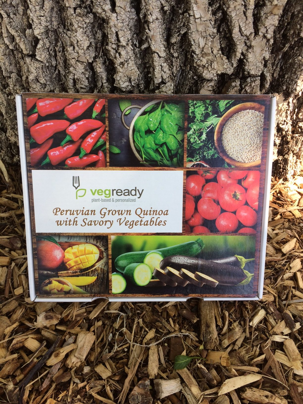 VegReady – Vegan Meals To Go