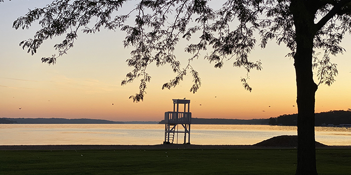 5 Places Vegans Should Visit in Lake Geneva, Wisconsin